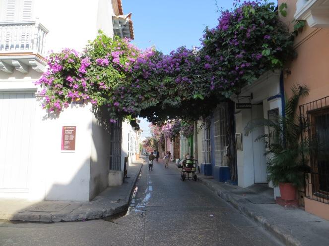 Le vie colorate di Cartagena