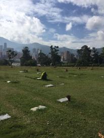 Il cimitero dove giace Pablo Escobar